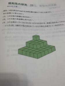 IMG_3048[1]